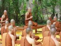 Understanding and Practicing Basic Buddhism